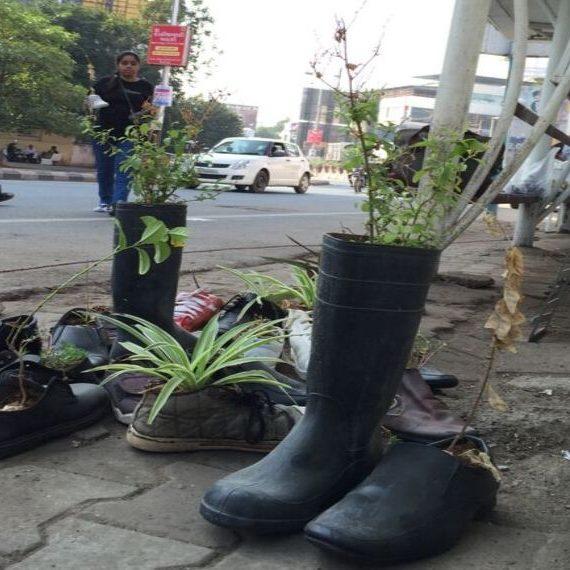 urban cobbler pics7